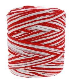 Noodle (T-shirt yarn) 4084